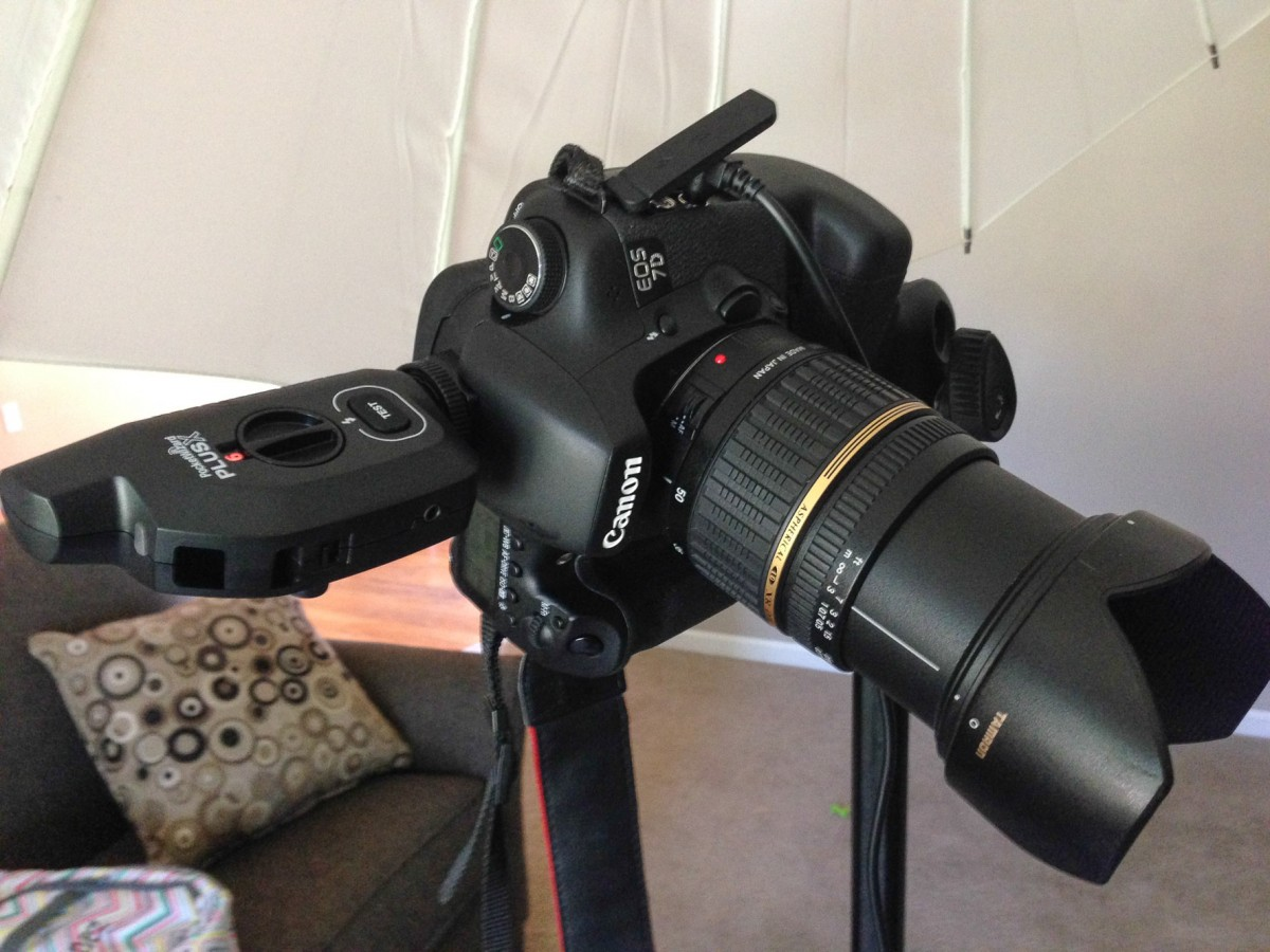 Canon 7D with PocketWizard PlusX